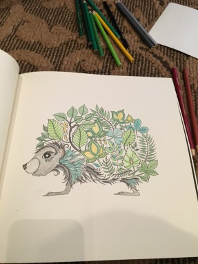 pages in my coloring book